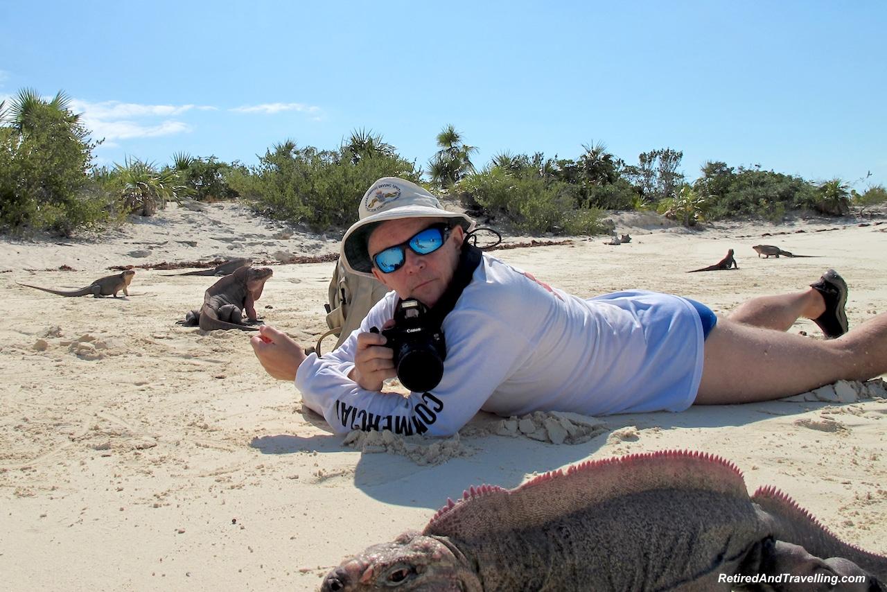 Iguana Island - Exuma swim with pigs.jpg