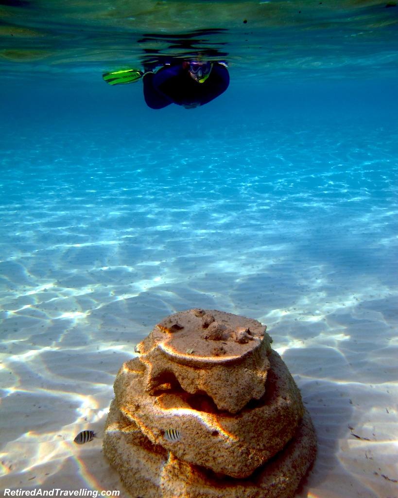 Fish Balls - Snorkel Ocean Atlas In Nassau.jpg