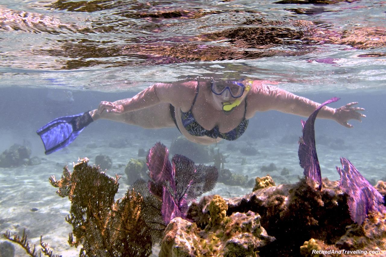 Snorkel Exuma - Exuma swim with pigs.jpg