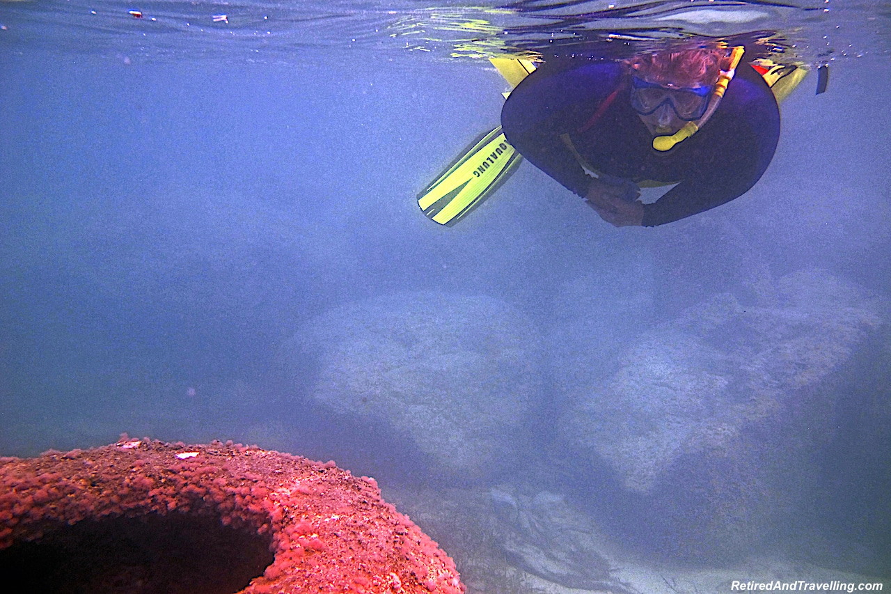 Snorkelling At Fish Balls - Cable Beach Eco Reef.jpg