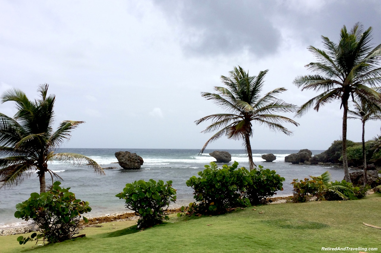 Barbados Bathsheba Palms - Barbados Quick Glimpse.jpg