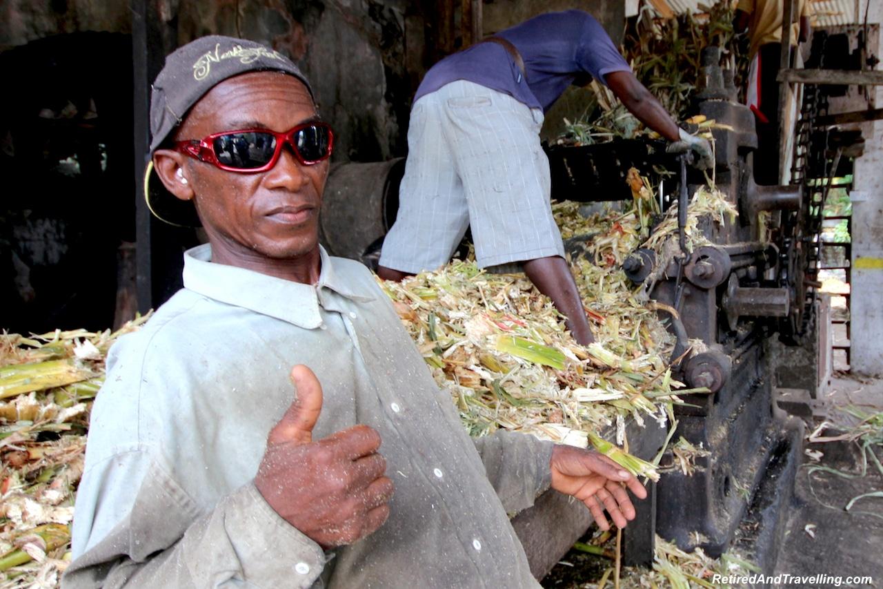 Grenada Sugar Cane - Eastern Caribbean Islands.jpg