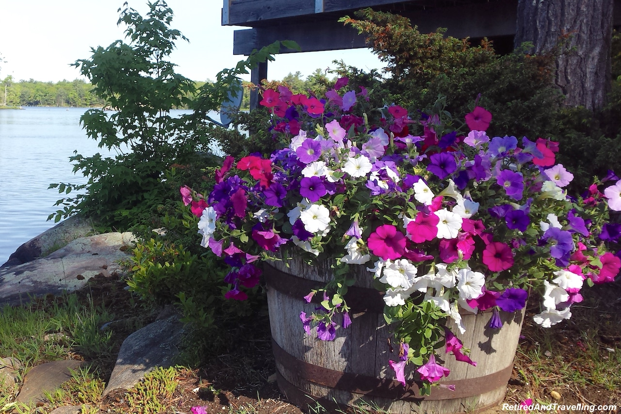 Greenhouse Flowers - Toronto Cottage Country.jpg