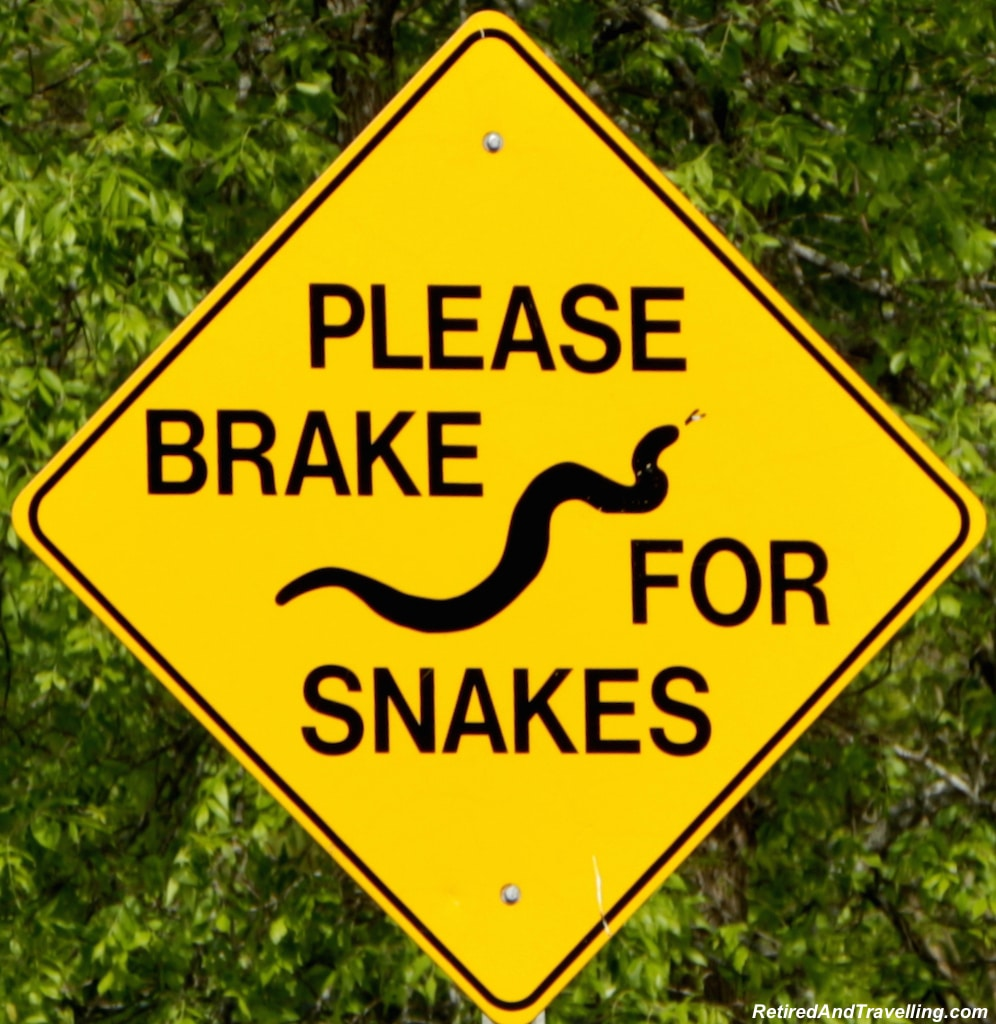Snake Crossing - Toronto Cottage Country.jpg