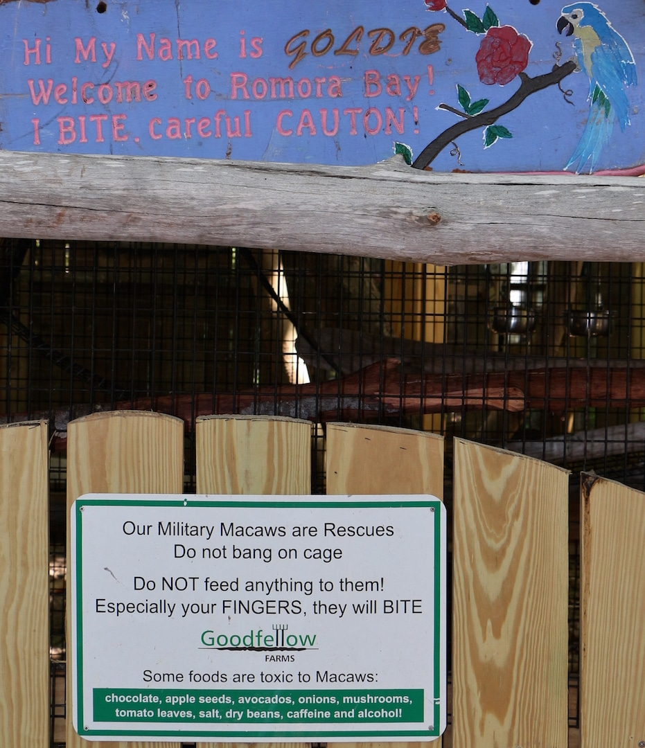 Goodfellow Farm Macaws - Dining in Nassau.jpg
