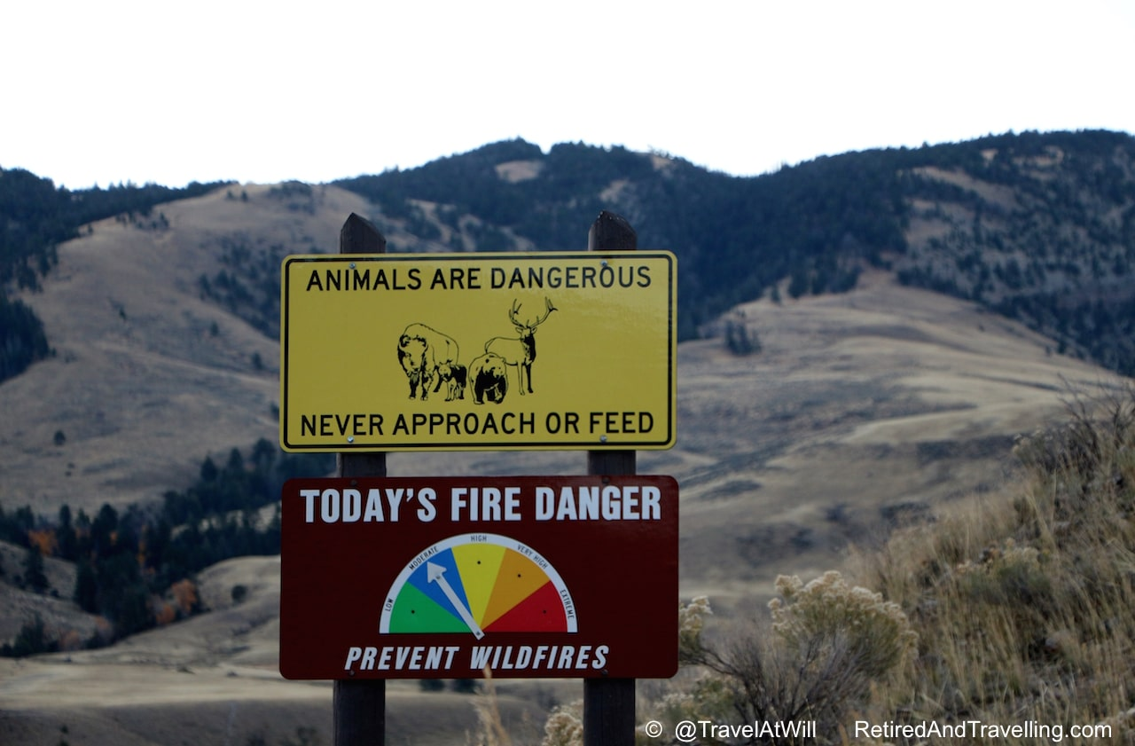 Animal Awareness - Tips For Visiting the National Parks.jpg