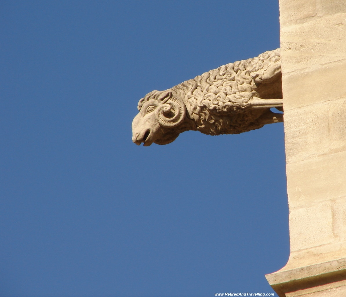 Sheep - Exploring Around Avignon.jpg