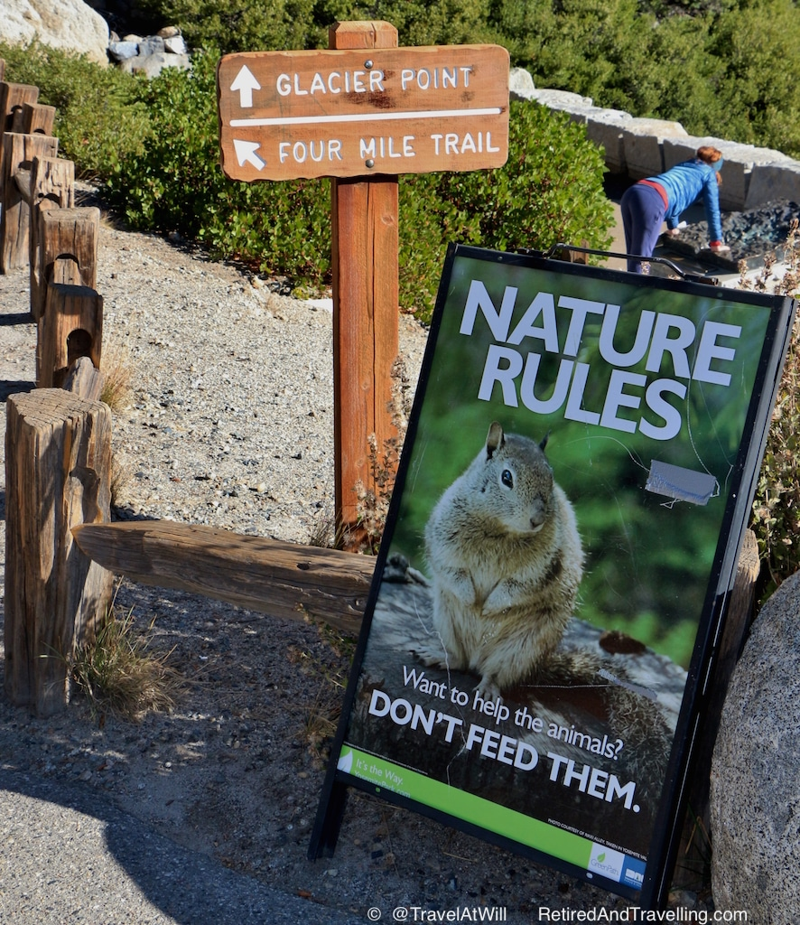 Beware of Animals - Tips For Visiting the National Parks.jpg