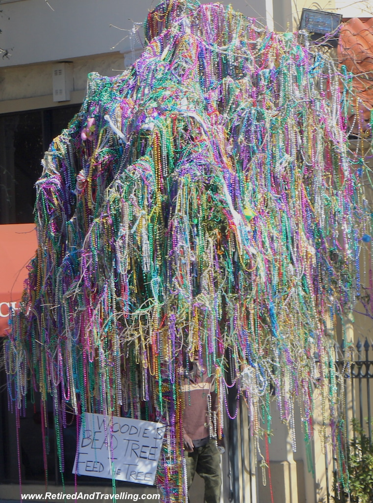 Decorated Trees - Mardi Gras in New Orleans.jpg