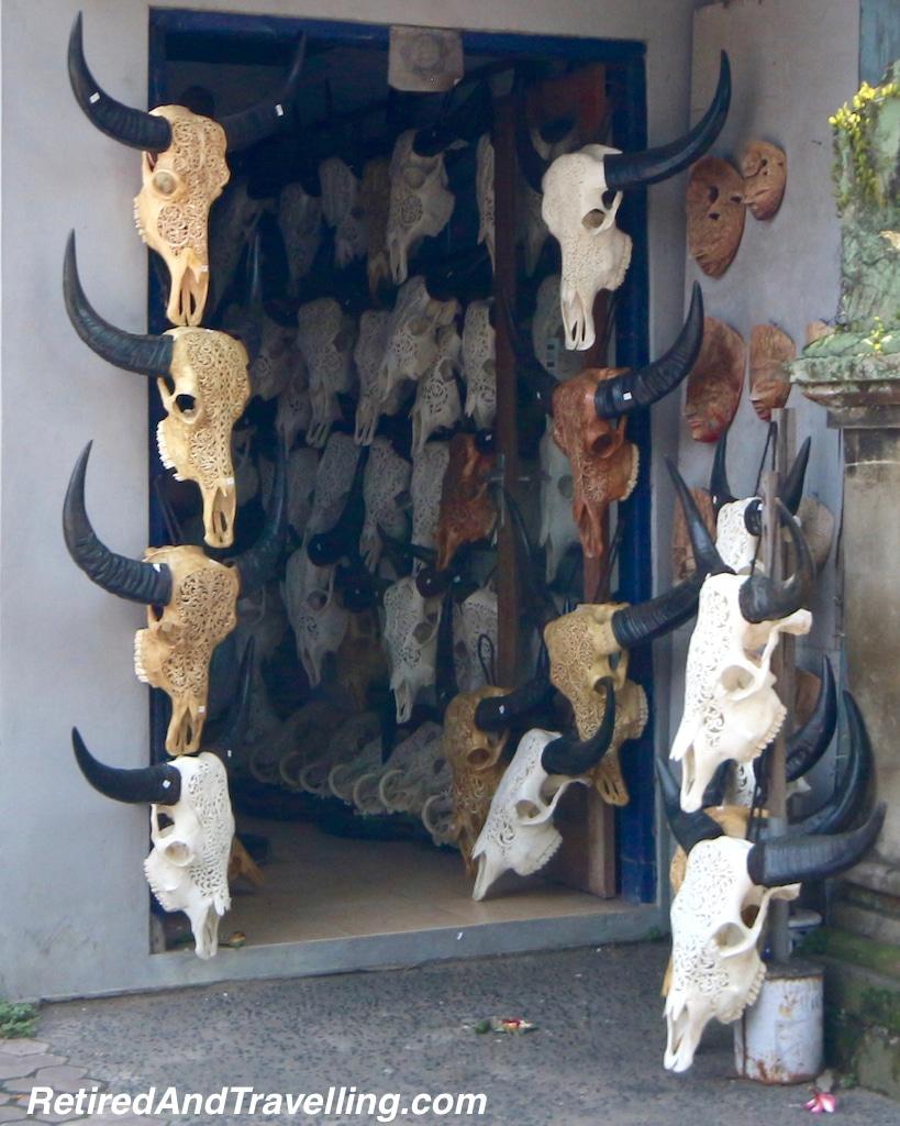 Animals of Bali - Faces of Bali.jpg