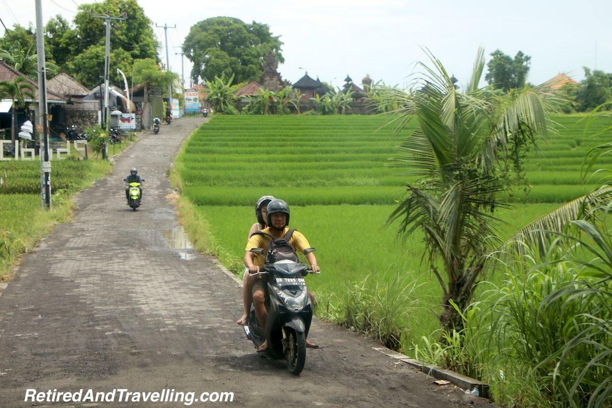Rice Fields - Day Trip to Canggu.jpg
