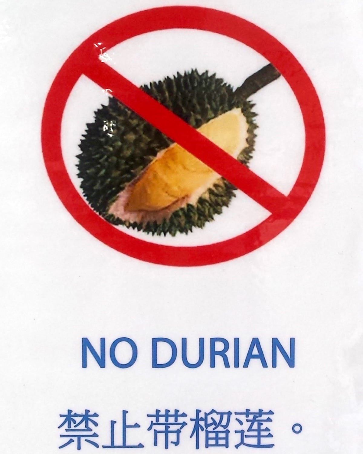 Durian Stinky Fruit - Bugis Night Market - Singapore By Night.jpg