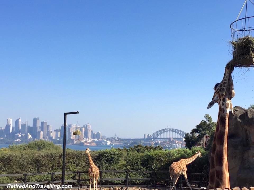 Taronga Zoo Sydney Australia - Adventures Through SE Asia.jpg
