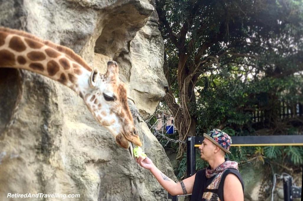 Taronga Zoo Sydney Australia - Adventures Through SE Asia.jpg