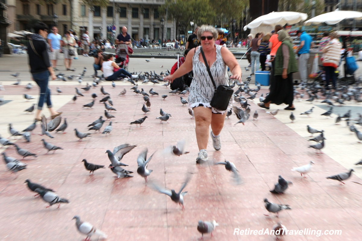 n Place de Catalunya - Birds at Play - Exploring Barcelona.jpg