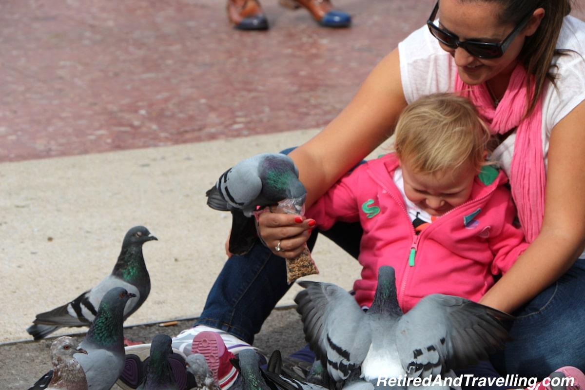 n Place de Catalunya - Birds at Play - Exploring Barcelona.jpg
