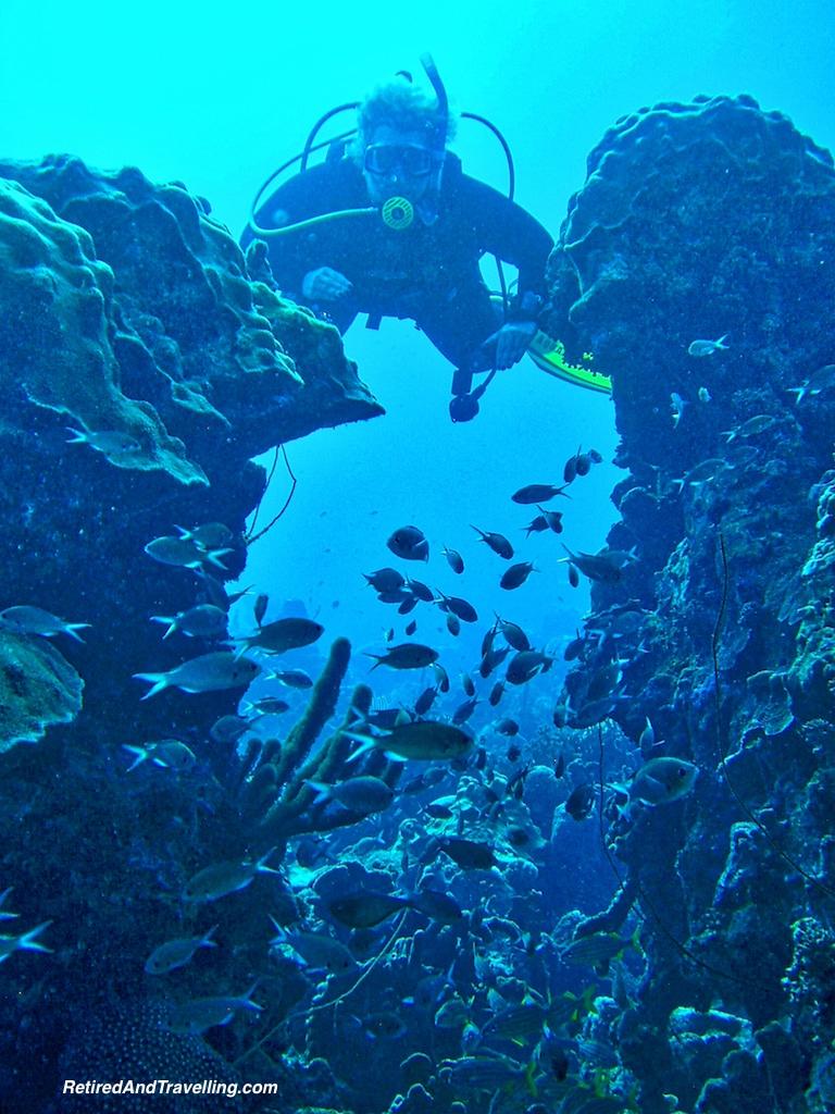 Scuba Diving Mushroom Forest - Curacao in Hurricane Season.jpg