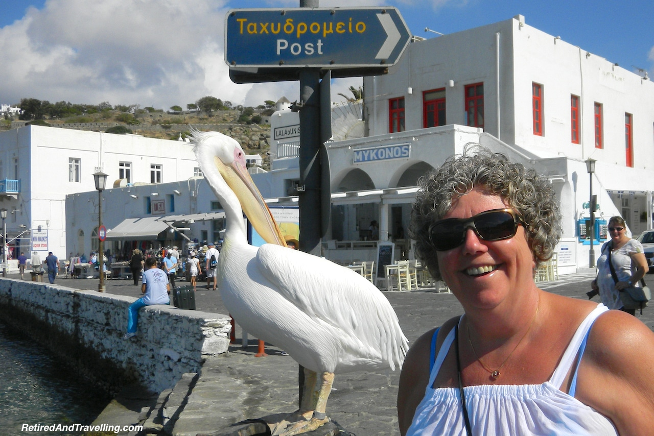 Mykonos Pelican Pete- Iconic Views of Santorini and Mykonos.jpg