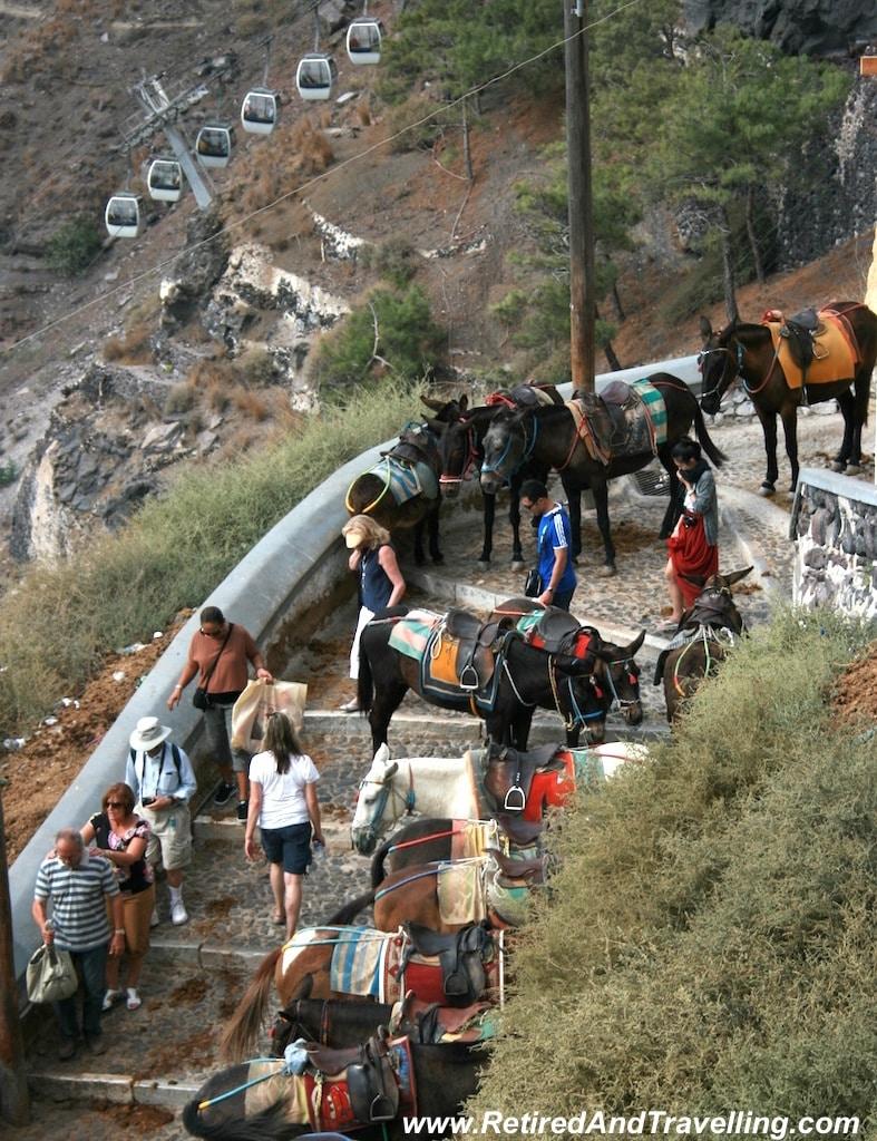 Santorini Donkeys - Iconic Views of Santorini and Mykonos.jpg