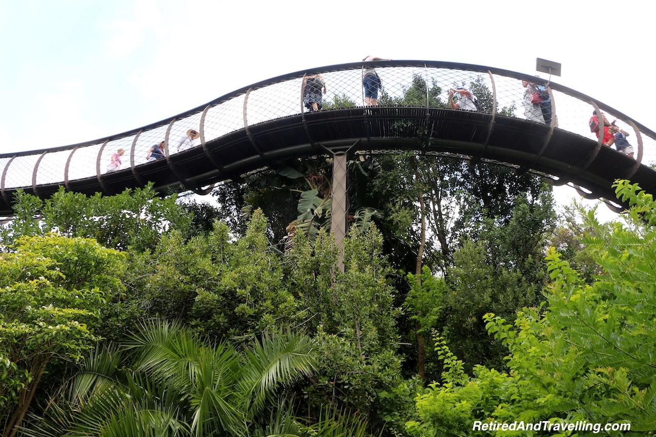 Canopy Walk - Relax in Kirstenbosch Gardens.jpg