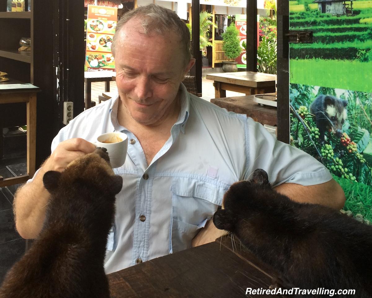Kopi Luwak Coffee - Food and Travel in 2016.jpg