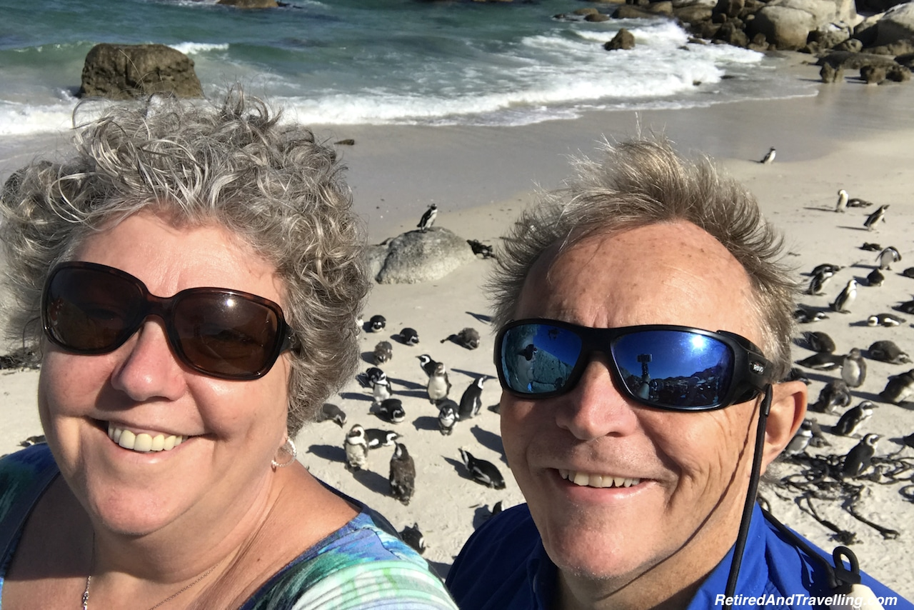 Penguins at Boulders Point Simon's Town - Tour the Cape In South Africa.jpg