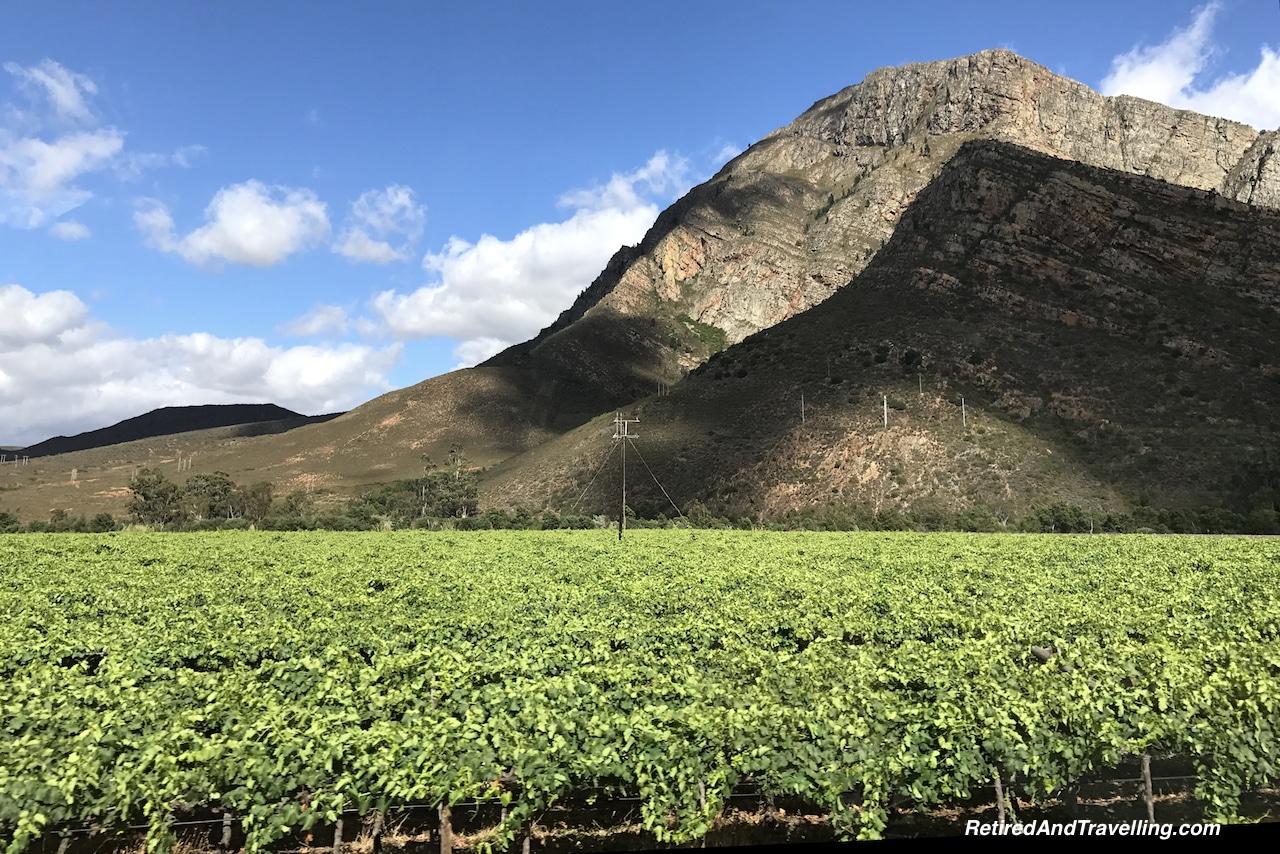 Cape Town Stellenbosch Wine Region.jpg