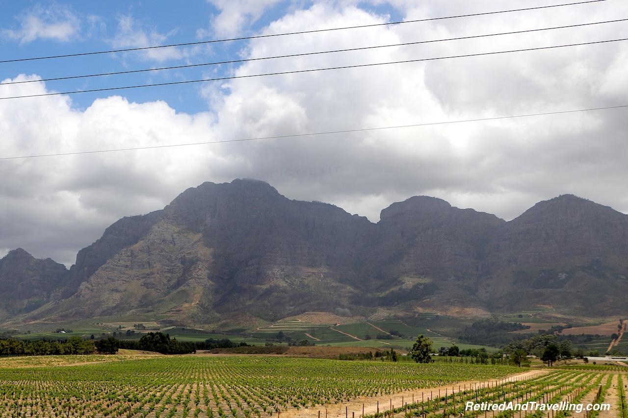 Wine Fields - Wine Tour in Stellenbosch.jpg