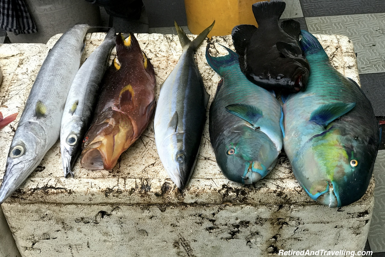 Fish Market - 24 Hours in the Maldives.jpg