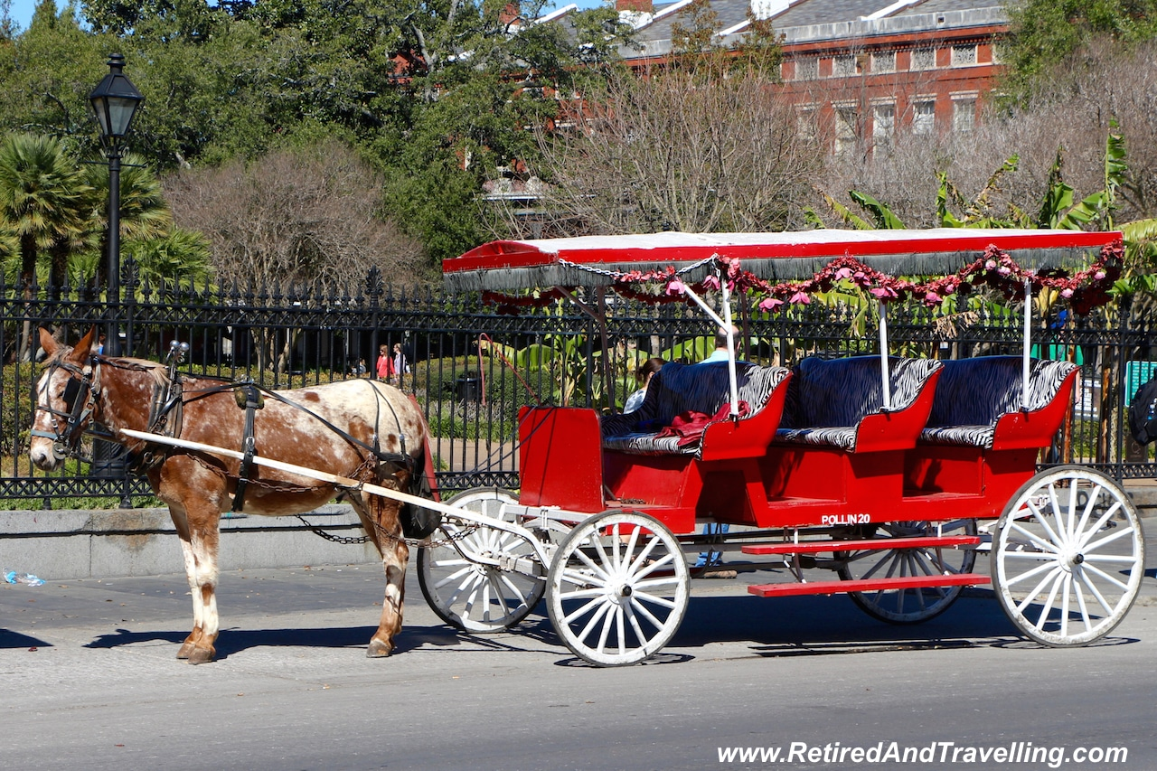 Wander Downtown - New Orleans is More Than Mardi Gras.jpg