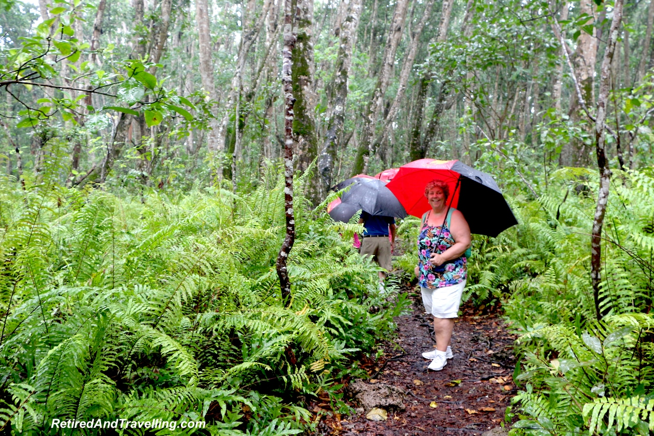 Jozani Rain Forest Walk - Touring Zanzibar In the Rain.jpg