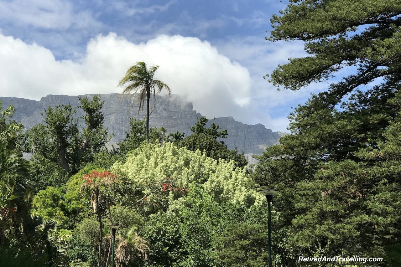 Table Mountain Over Company's Garden - Quick Tour of Cape Town.jpg