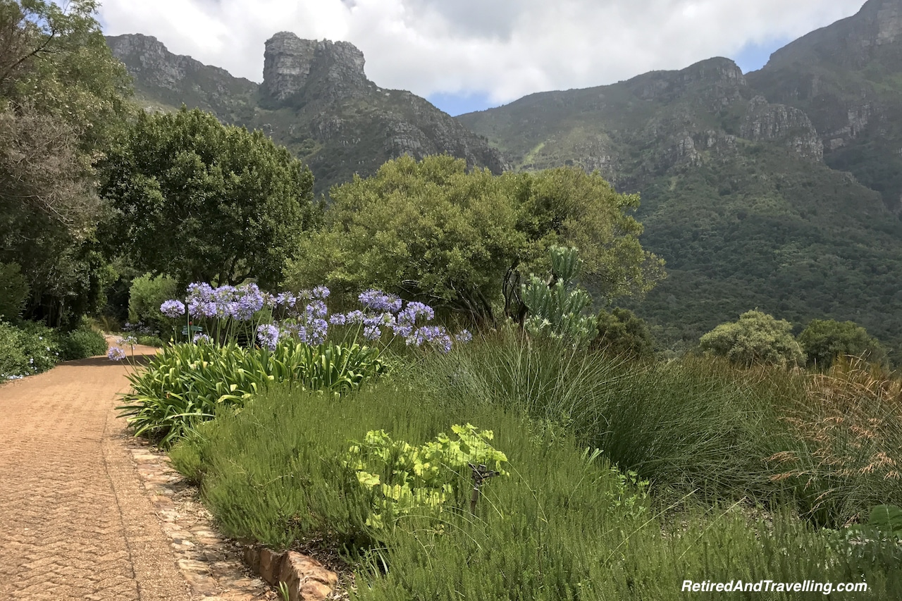Kirstenbosch Gardens - Things To Do In Cape Town.jpg