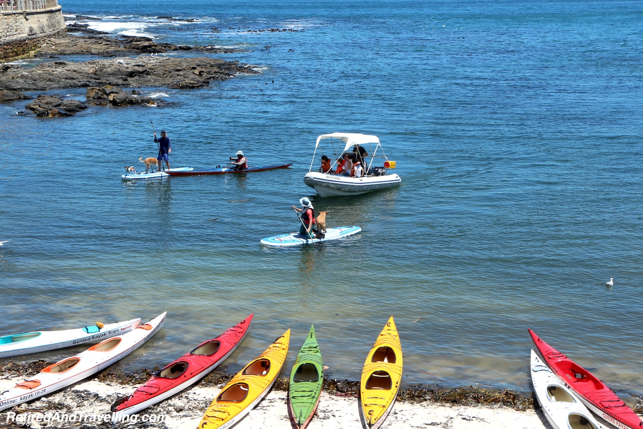 Sea Point SUP and Kayaks - Sea and Mountains Surround Cape Town.jpg