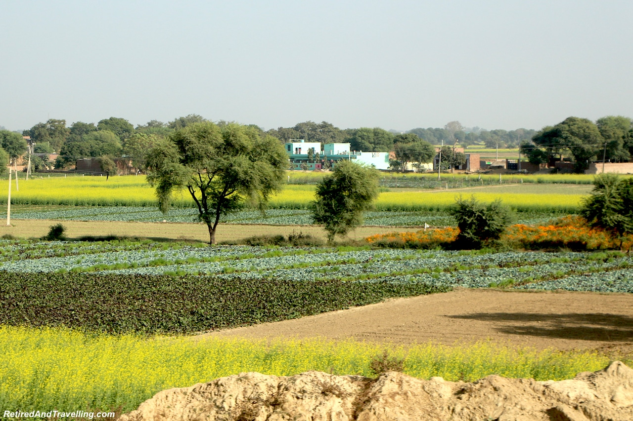 Farms on Drive to Agra - Delhi Drive to Explore Agra.jpg