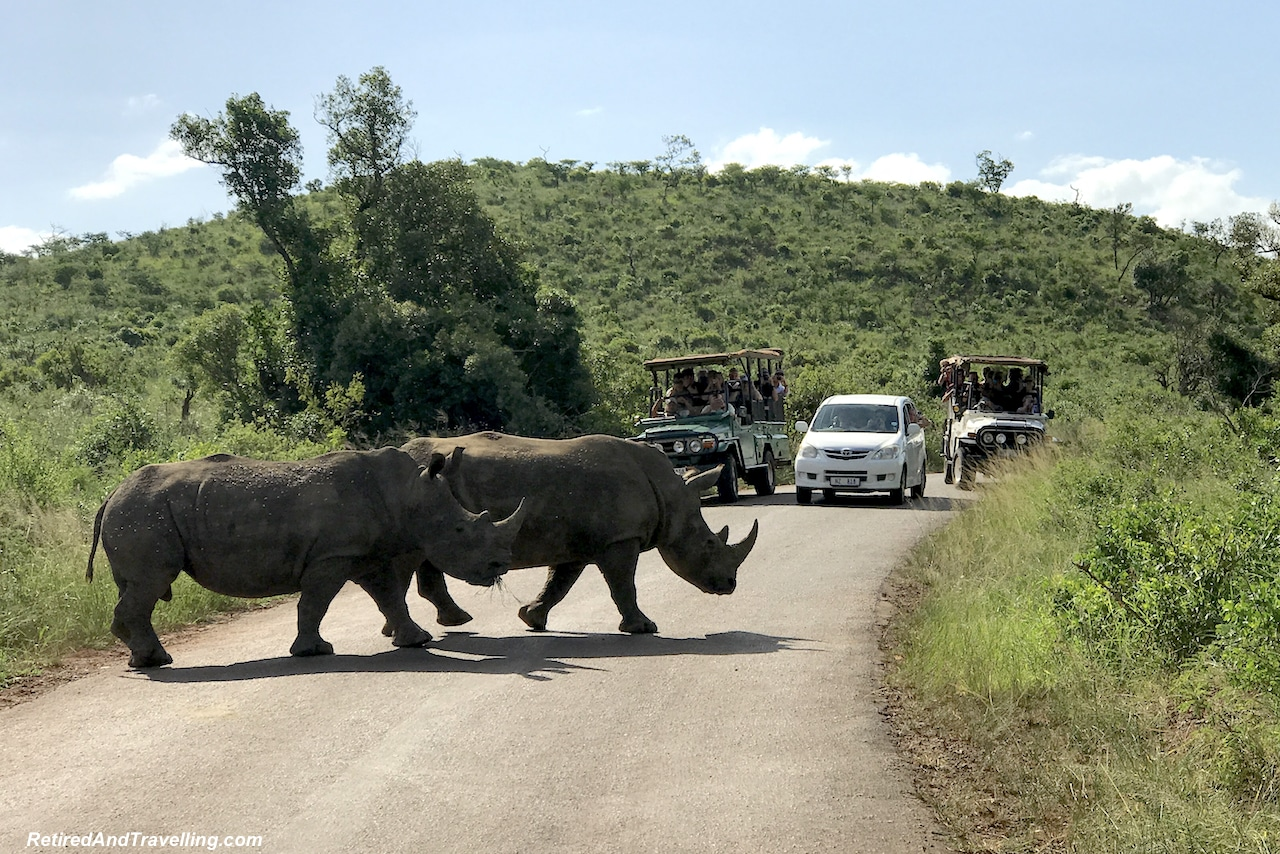 White Rhinos - Hluhluwe Game Reserve - Big Five in South Africa.jpg