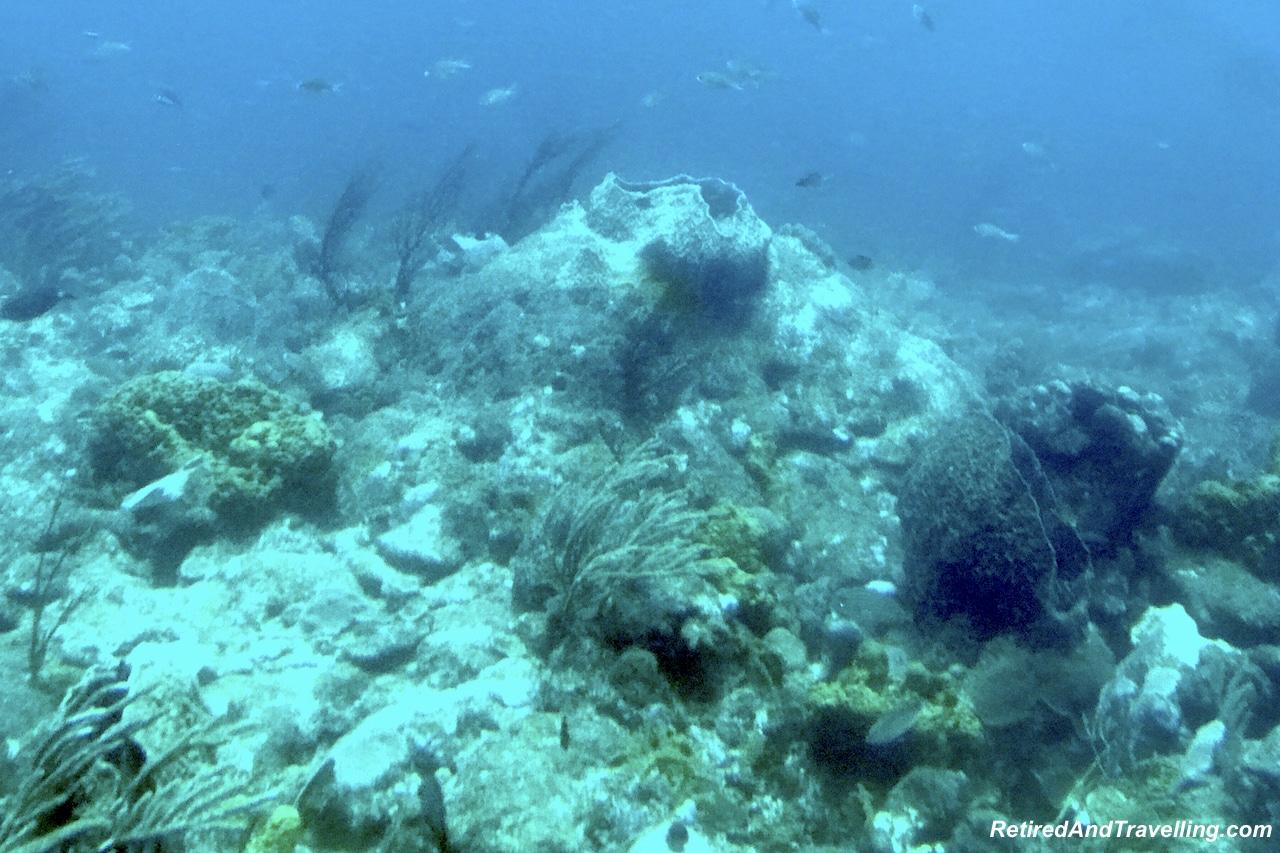 Atlantis Submarine Underwater Views - Submarine Ride in Barbados.jpg