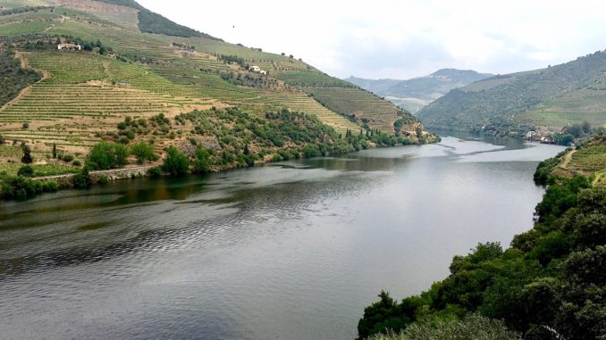 Driving Along the Douro River Valley.jgp