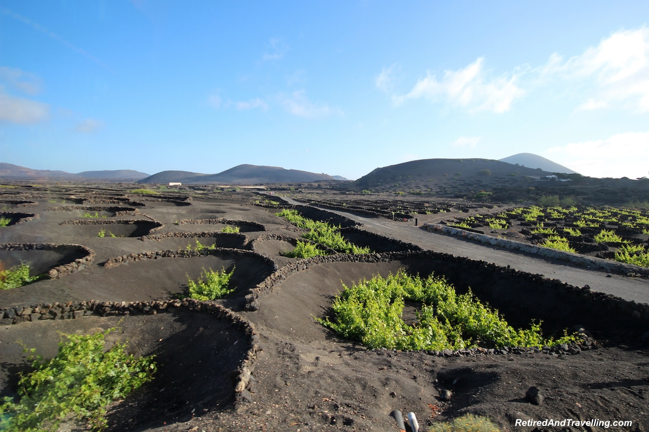 Black Lava Wine Fields - Colours Of Lanzarote.jpg