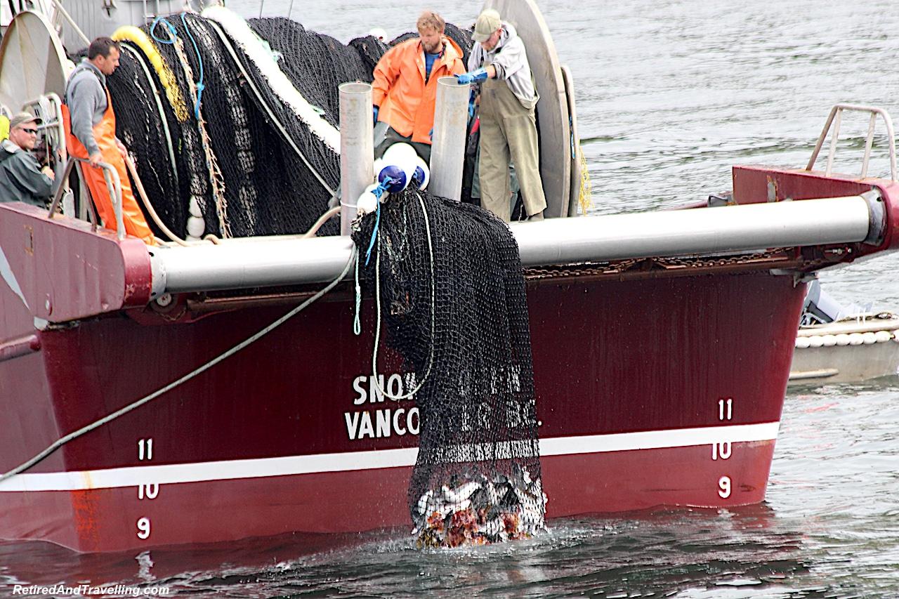 Prince Rupert Purse Seine Net Fishing - Alaska cruise for grizzly bears.jpg