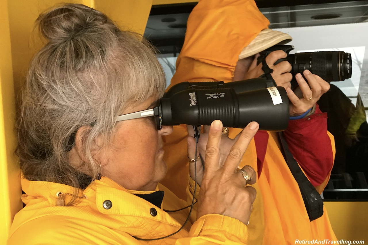 Prince Rupert Khutzeymateen Valley Bear Watchers - Alaska cruise for grizzly bears.jpg