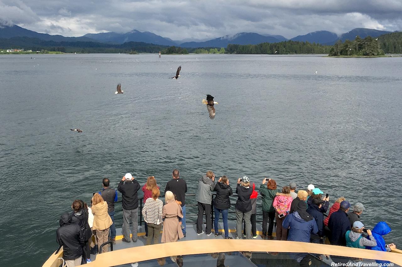 Prince Rupert Metlakatia Passage Eagles - Alaska cruise for grizzly bears.jpg