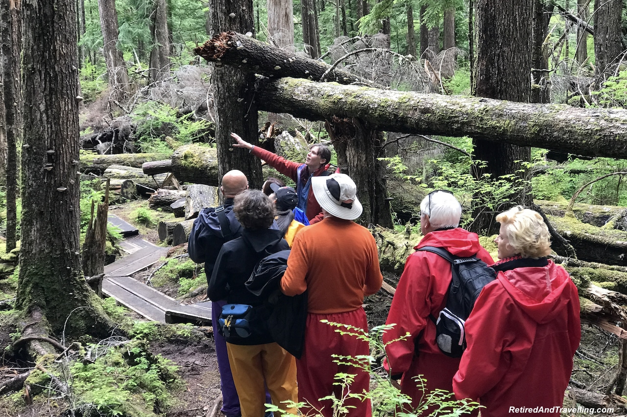 Rainforest Education - A Rainforest Excursion in Ketchikan.jpg