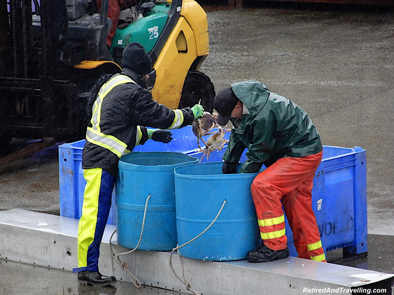 Prince Rupert Harbour Crabbing - Alaska cruise for grizzly bears.jpg