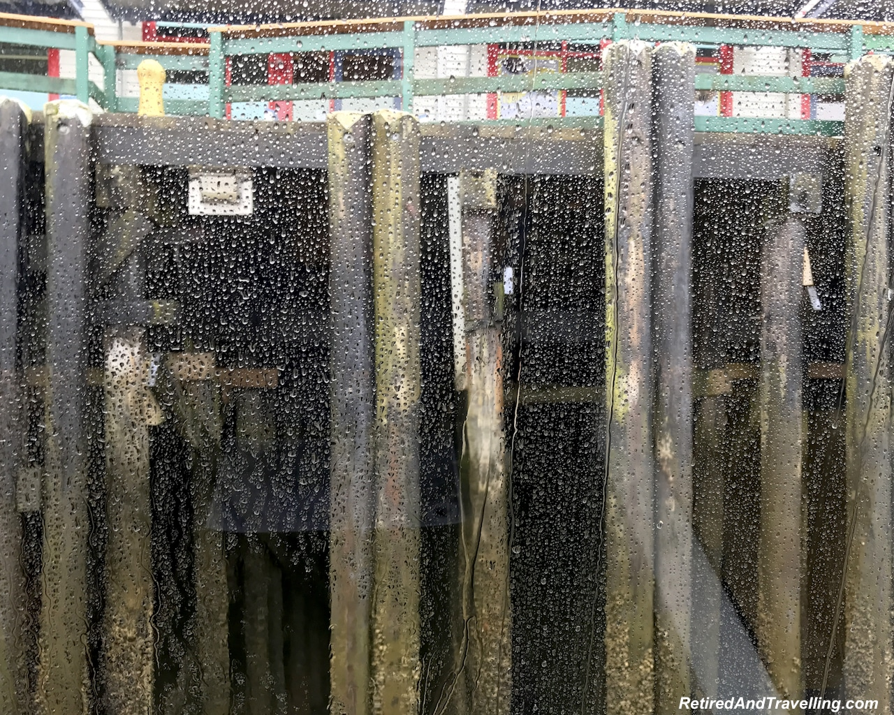 Prince Rupert Harbour Low Tide - Alaska cruise for grizzly bears.jpg