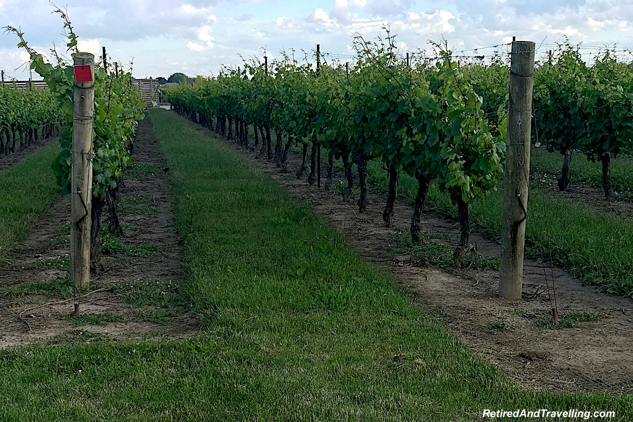 Wineries Niagara on the Lake.jpg