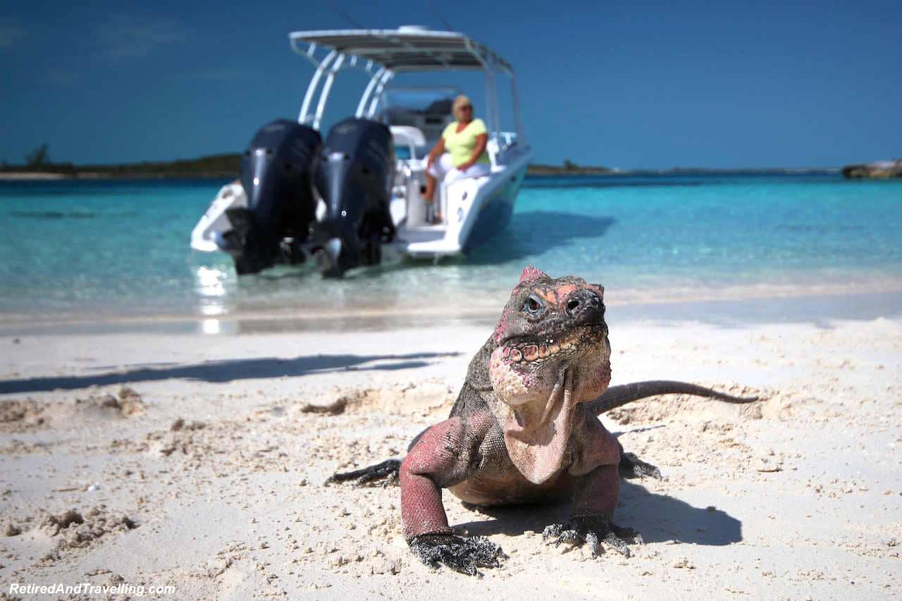 Exuma Iguana Island - Water Fun in Bahamas.jpg