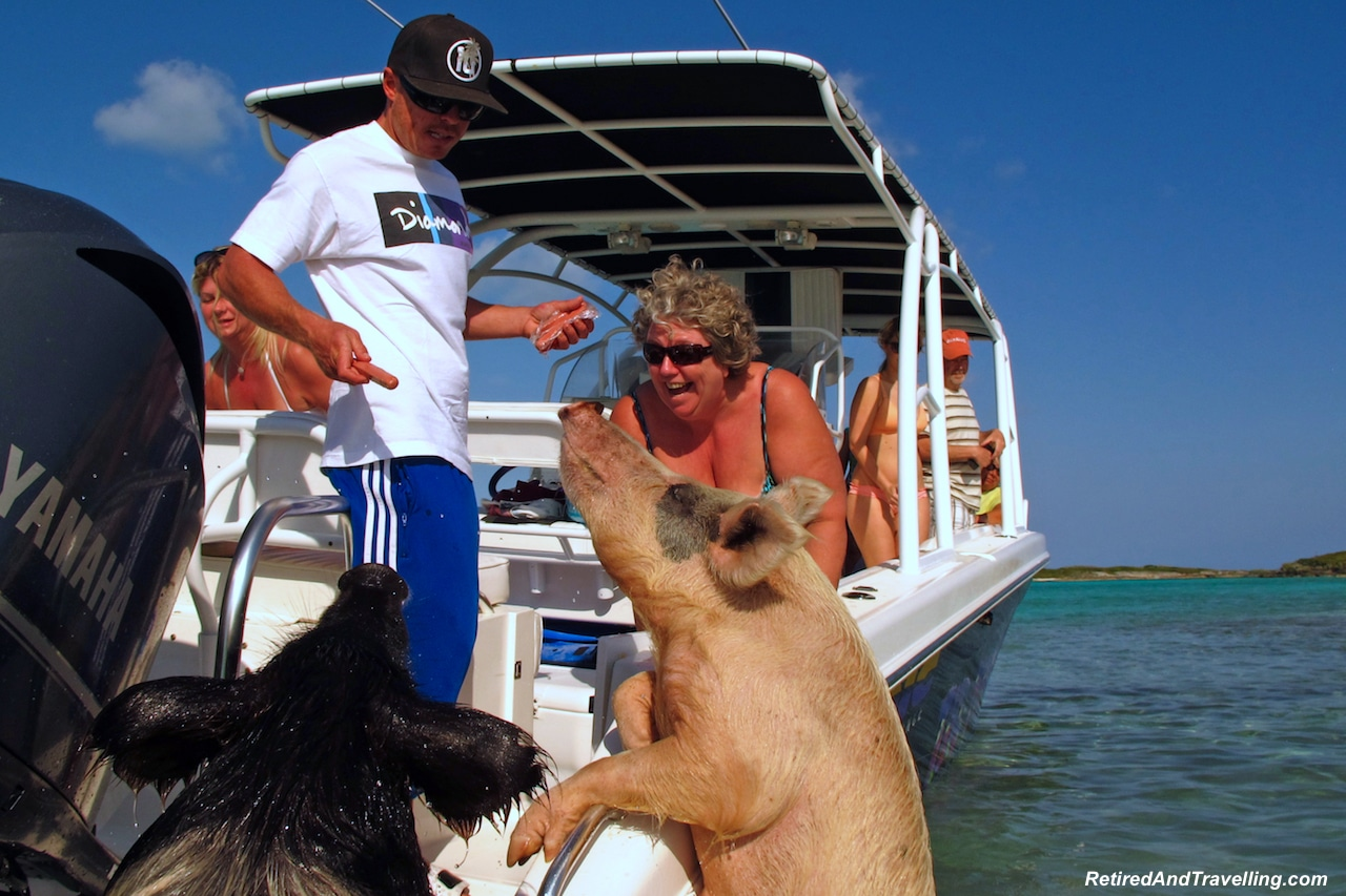 Exuma Swim with Pigs - Water Fun in Bahamas.jpg