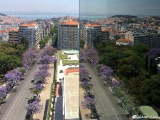 Start A Portugal Stay in Lisbon.jpg