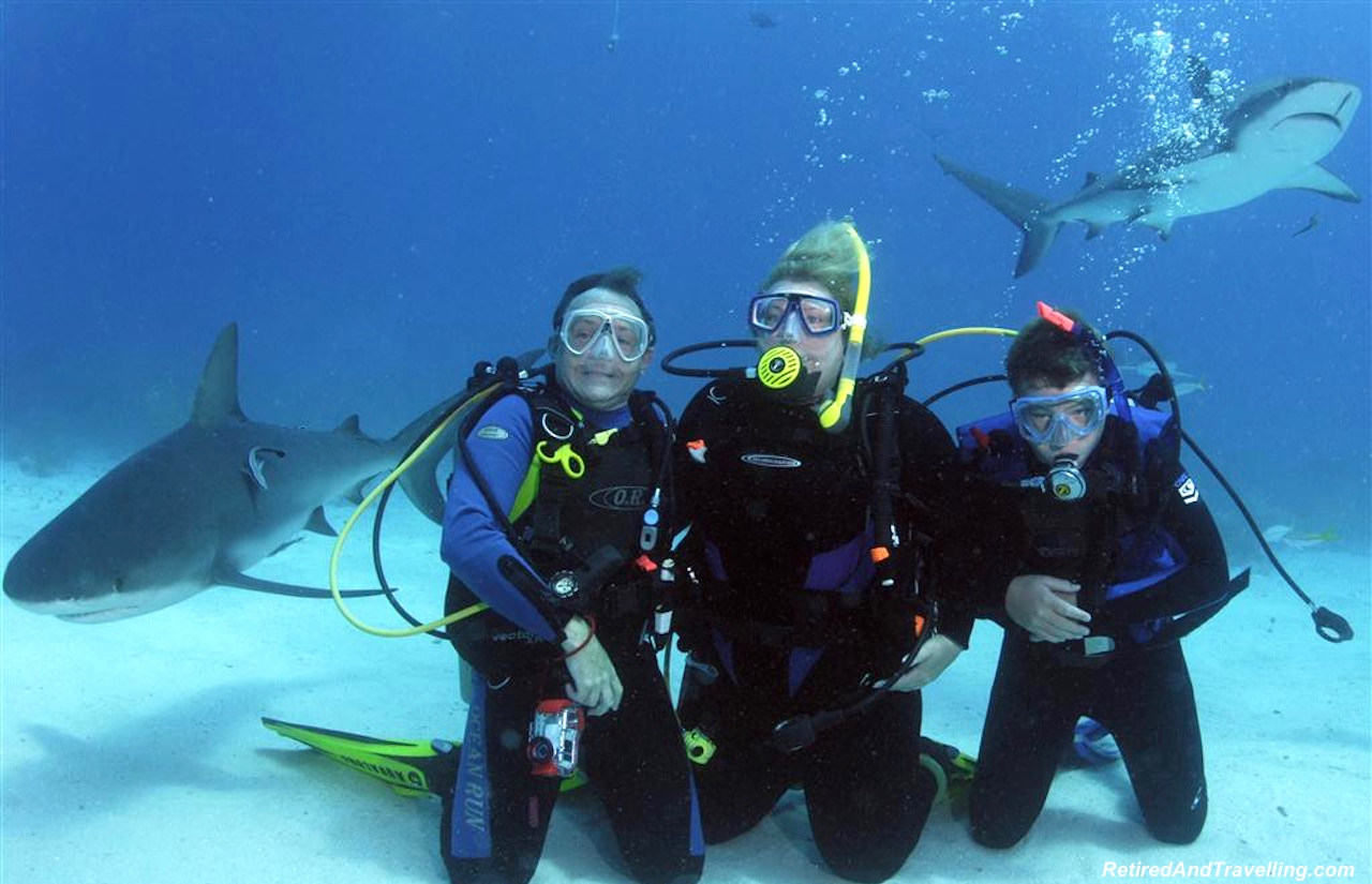Scuba Dive Nassau Sharks - Water Fun in Bahamas.jpg